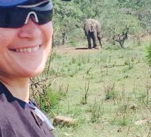 Abbie meets an elephant